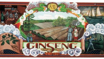 Ginseng_Story_Estacada_Mural_WongsKing